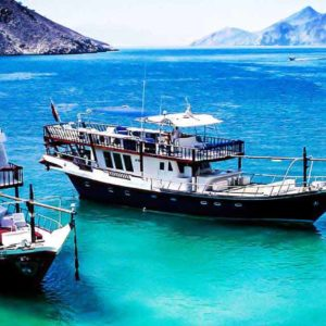 Half Day Dhow Cruise in Musandam, Oman